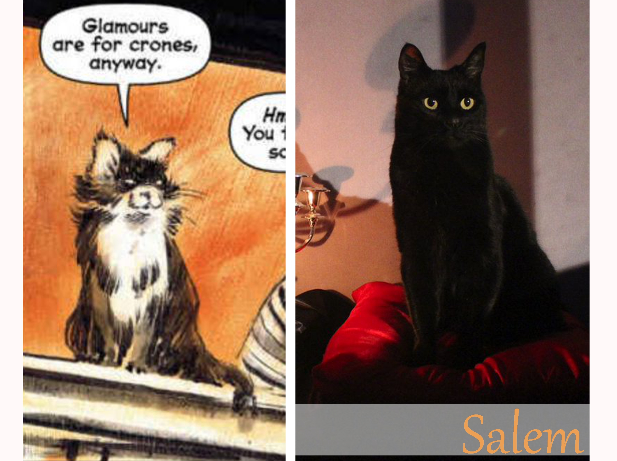 https://talilifestyle.com/2019/05/24/chilling-adventures-of-sabrina-:-t-v-show-comic-comparison